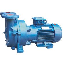 Pompe à vide à anneau d'eau série 2BV