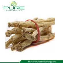 Raw Chinese Medicinal Herb Radix Codonopsis