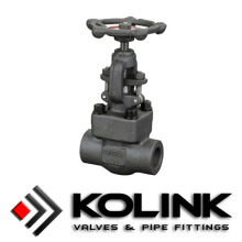 Forged Steel Globe Valve (SW/Threaded End)
