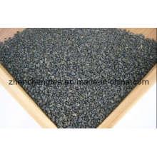 Gunpowder Tee-Grüner Tee (3505AA)