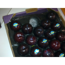 Blister Process Type Alveolar Hexagon Plum Use Punnet Tray Fruit Packaging with Export Standard for Display in Market