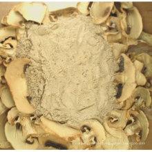 Maitake Mushroom Powder, Matsutake Mushroom Powder & Shiitake Mushroom Powder & Reishi Powder
