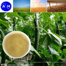 Aminoácidos vegetais puros orgânicos da fonte dos ácidos aminados