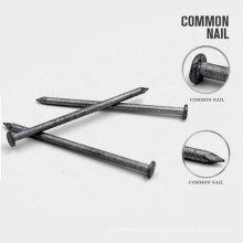 Neue Design Oval Wire Nails aus China