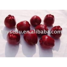Fruits en plastique artificiel