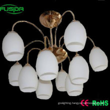 Decorative Glass Pendant Lamp/Chandelier Lighting (X-8106/5+5)