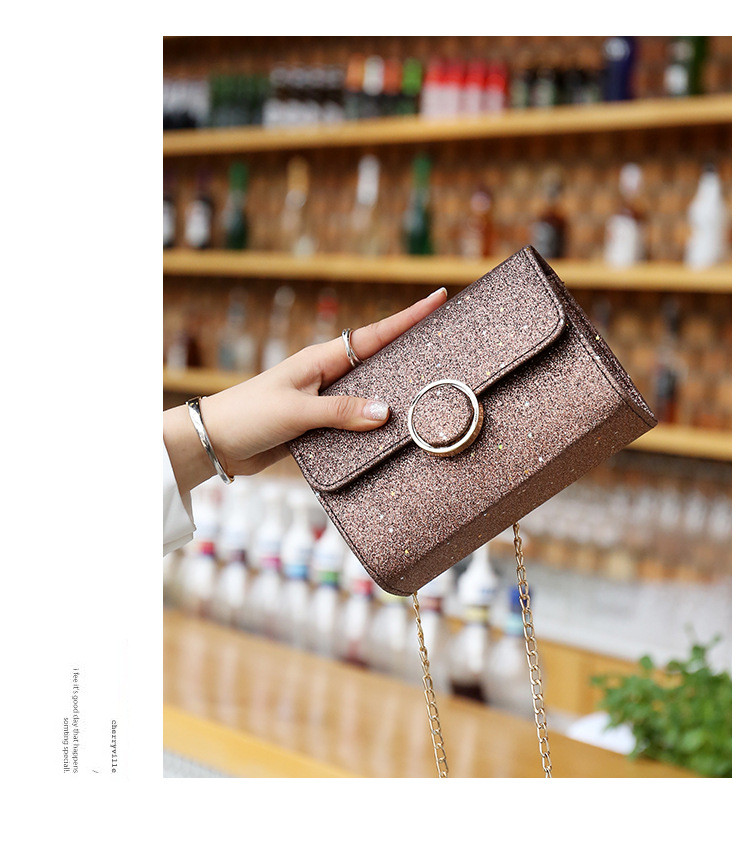 lady hand bags x1131 (20)