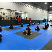 LinyiQueen bjj mat jiujitsu matelivery mat matnime cheap taekwondo mma bjj mats high quality martial arts gym wall padding bjj