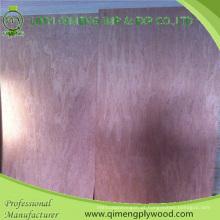 Pele da porta da madeira compensada de Bintnagor da classe 3 de Bbcc ′ 3′x7 ′ 3′x8 with com preço do competidor