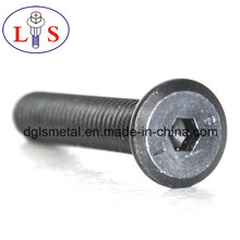 Flat Head Hexagonal Socket Bolt Csk Head Hex Socket Bolt