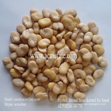 New Crop Broad Beans 60/70 (whole/peeled/split)