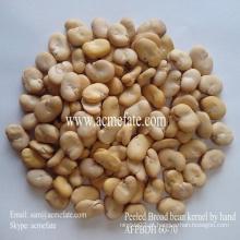 New Crop Broad Beans 60/70 (inteiro / descascado / dividido)