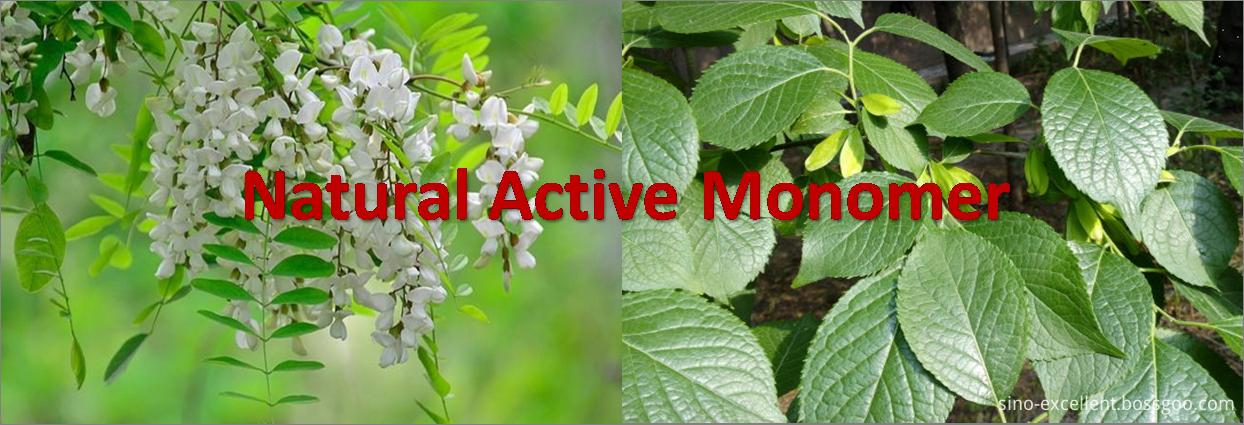 Natural Active Monomer