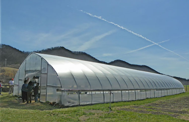 Prefabricated Tunnel Plastic Greenhouse