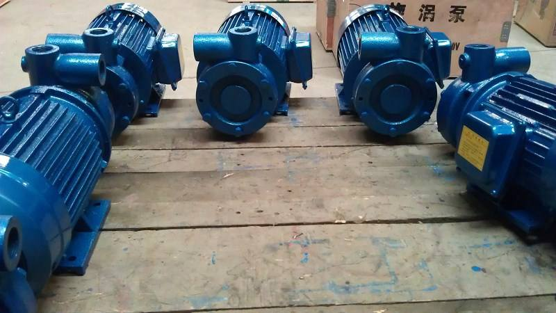 1W single stage vortex pump 3