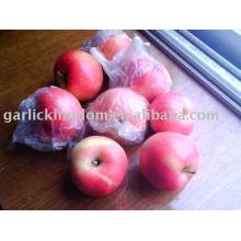 Vender 2010 manzana estrella roja