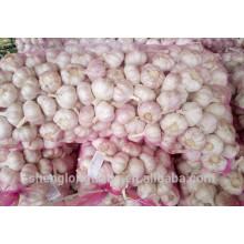2017 chinois frais graines d'ail blanc pur