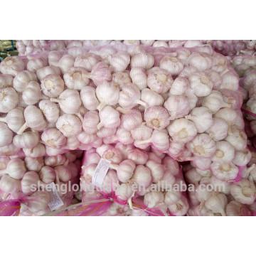 2017 chinesische Frische Pure White Knoblauch samen