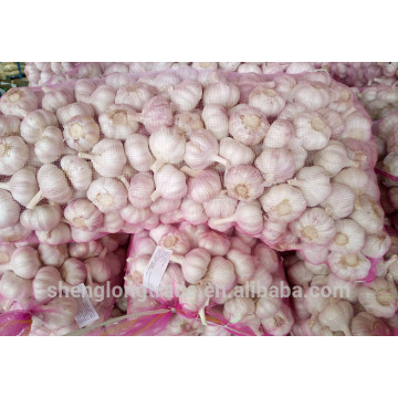 2017 Chinese Fresh Pure White Garlic seeds