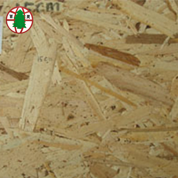 High Mositure Resistance Poplar Material OSB2