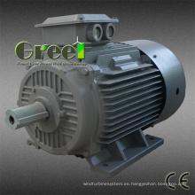 AC Brushless 3 fase 10kw 60rpm generador magnético sincrónico permanente