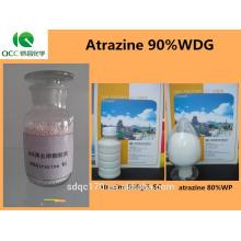 Größeres Bild ansehen Weit verbreitetes Herbizid Atrazin 80% WP 50% SC 90% WDG 97% TC CAS Nr .: 1912-24-9 Weit verbreitetes Herbizid Atra