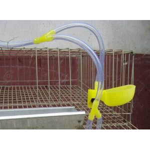 Quail welded wire mesh cage