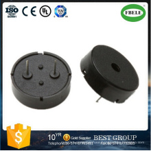 External Drived 12V Electric Piezo Buzzer