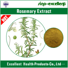 100% natürliches Rosmarin-Extraktpulver