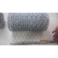 20cm a 50cm largura Hexagonal Wire Mesh