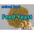 Feed Hefe Pulver für Feed Grade