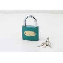 Sont la forme normale clé belle et belle couleur peinte cadenas peint