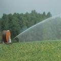 Vende-se sistema de irrigação de carretel de mangueira de água para viajantes