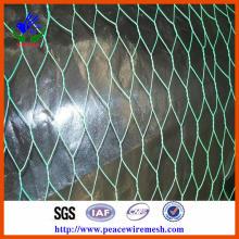 Vendas quentes! ! Heavy Hexagonal Gabion malha de arame (HPZS1108)