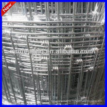 farm fencing wire (professional factory )