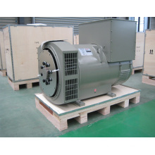 Three Phase Brushless Self-Exciting AC Alternator Jdg Series (8kVA-2500kVA)