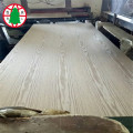5.2mm Pencil Cender BBBB Veneer Plywood Sheet