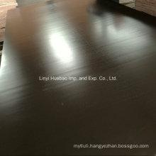 Marine Plywood/Shuttering Plywood Panels Poplar Core WBP Glue for Concrete