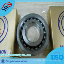 45tac100A Ball Screw Supporting Bearing