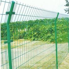 Valla de malla de alambre soldada para protección