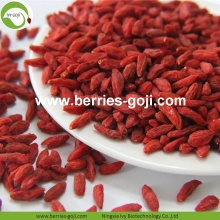 Fábrica al por mayor Nutrición Natural Ningxia Wolfberry
