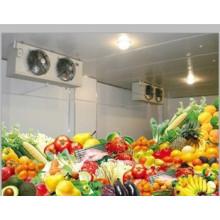 Soem-Fabrik-Kühlraum und Tiefkühlschrank-Kühlraum