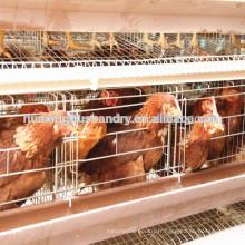Chine populaire bonne qualité uganda couche ferme cage de poulet
