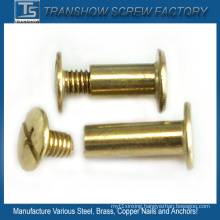 Slotted Philips Combination Drive Brass Screw with Sleeve Nuts