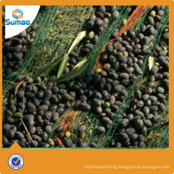 Agricultural usage virgin HDPE olive harvest netting for farm