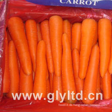 80g-150g Neue Ernte Frische Karotte