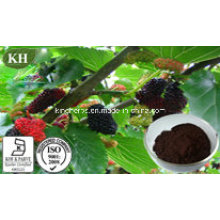 Extrait de fruit de mûrier Anthocyanidines 10% -25%; Ratio Extract