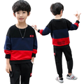 Boys Spring Multi-color Printed Long-sleeved Cotton Suit