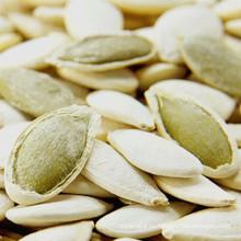 Semillas de calabaza de alta calidad con cáscara
