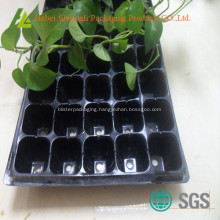 Plastic Sprouting seedling trays for nursery